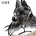 1105.jpg